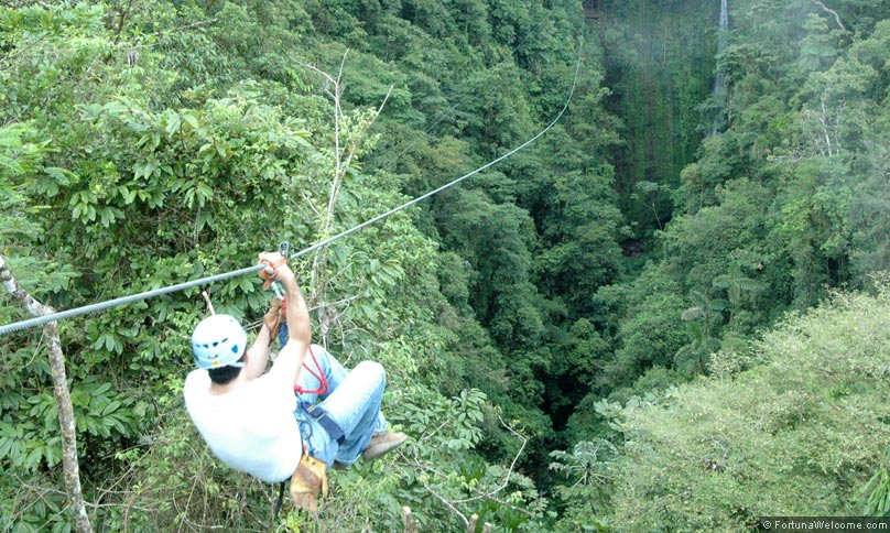 Canopy Tour plus Horses